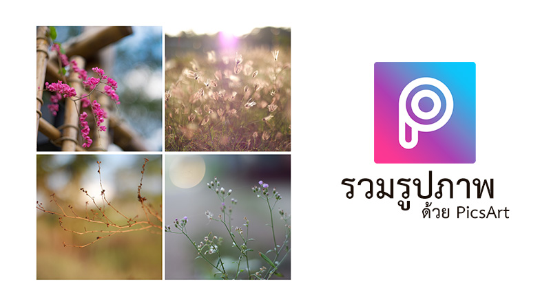 สร้างคอลเลคชั่น นำหลายๆภาพมารวมเป็นภาพเดียว ด้วย PicsArt